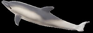 Mojo Animal Planet Delfín