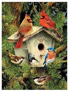 Malování obrázků podle čísel - Ptáčci u budky 22 x 30 cm