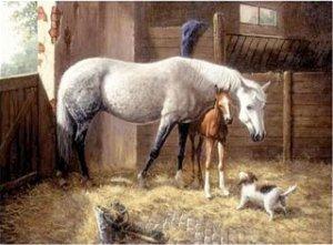 Royal Langnickel malování podle čísel - Koně ve stáji 40x30 cm