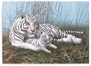 Royal Langnickel malování podle čísel - Bílý tygr s mládětem 40x30cm